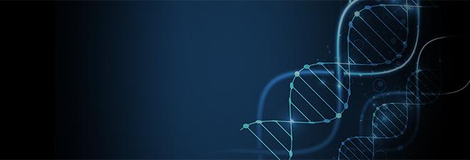 Nuestro ADN
